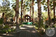 Boojum Tree's Hidden Gardens in Phoenix. Hidden Garden, Tree Wedding, Photo Tree, Digital Photography, Phoenix, Photo Galleries, Arch, Gardens, Outdoor Structures