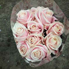 Pale pink rose called 'Sweet Avalanche' sold in bunches of 20 stems from The Flowermonger, the wholesale floral home delivery service.