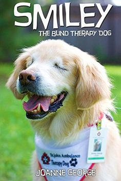 Even Though He Was Born Without Eyes Smiley Is The Best Therapy - Born blind smiley the golden retriever becomes a loving therapy dog