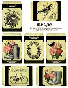 Ephemera's Vintage Garden: Free Printable - Tulip Garden Seed Packets