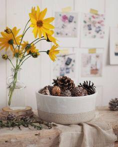 #Collaborazione con #Giovelab promozione #Ciotola #tortiera Handmade  #ContentCreation #VisualContentCreation #InstagramPost #photoshooting   #Vintage #stilllife #clay #breakfast Still Life, Planter Pots, Instagram, Proposal