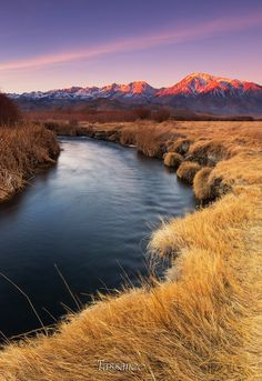 Owens River by Tassanee Angiolillo on 500px