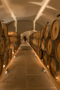 Quinta do Valado cellars | surely some lords exports or wealth stems from wine. :)