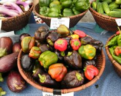 Local Food and The Farm Bill