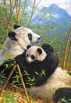 Puzzle Nueva Dinastía, Oso Panda, 1000 piezas, Castorland  http://sinpuzzle.com/puzzle-1000-piezas/1108-102518-puzzle-nueva-dinastia-oso-panda-1000-piezas-castorland.html