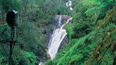 Scenic attractions in the Yarra Ranges, Yarra Valley & Dandenong Ranges, Victoria, Australia
