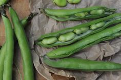 What can I do with a glut of broad beans? | Kitchen aide | Food | The Guardian English Cheese, Brine Solution, Growing Beans, Grilled Lamb, Fish Stew, Rapeseed Oil, Soda Bread, Seafood Restaurant, Curry Powder