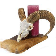 Hornkunst - Geweihe, Schmuck und Accessoires mit Strass