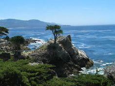 Monterey & Carmel CA
