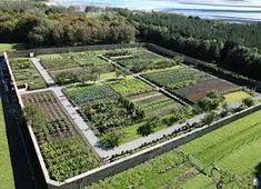 Kitchen Garden, di Lissadell house, in sligo ireland Vegetable Garden Planner, Small Vegetable Gardens, Vegetable Farming, Vegetable Garden For Beginners, Vegetable Garden Design, Farm Gardens, Outdoor Gardens, House Gardens, Homestead Layout