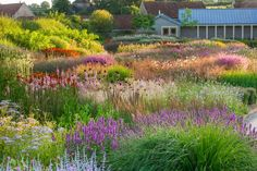 Another of my photos from the new book English Gardens by Kathryn Bradley-Hole. Incredible planting by Piet Oudolf at Hauser & Wirth Somerset. Prairie Planting, Prairie Garden, Meadow Garden, Garden Cottage, Somerset, Plant Design, Garden Design, Landscape Architecture, Landscape Design