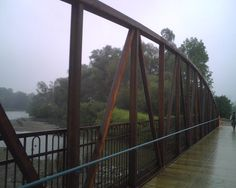 They installed a replacement bridge in Waterloo Park recently Silver Lake, Bridge, Park, Spring, Parks, Loft, Bro