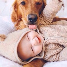 Baby and dog love