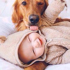 66 fotos que comprovam a amizade entre bebês e cachorros
