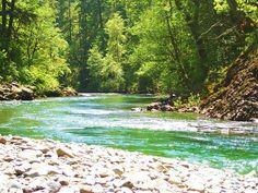 """""""Little North Fork of the Santiam River"""" by Katie Ficker Backpacking Oregon, Oregon Travel, Hiking Usa, Hiking Trails, Water Art, Best Hikes, Outdoor Recreation, Pacific Northwest, Travel Pictures"""