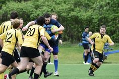 Rugby Union Club Krems Rugby, Club, Running, Sports, Racing, Hs Sports, Keep Running, Sport, Jogging