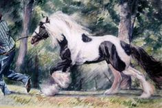 The Virginia Equine Artists Association was founded to promote, market and provide educational opportunities for Virginia Equine artists and photographers. Draft Horses, Equine Art, Virginia, Artists, Animals, Animales, Animaux, Artist, Horse Art