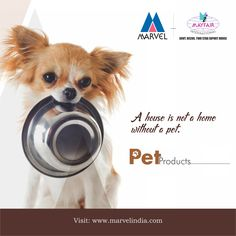 A house is not a home without a pet.  Tel : +91-22-49253333 #PetProducts #Bowl