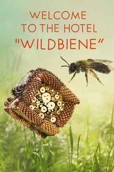 Mit unserem selbstgebastelten Wildbienenhotel machen Sie diesen wichtigen Insekten das Nisten ein bisschen einfacher ...