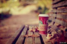 Good Morning, Happy Fall!