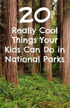 Travel to national parks is seeing explosive growth, so take a look at 20 really cool things your kids can do in our national parks, from becoming a Junior Smokejumper at Yellowstone NP to sledding on sand dunes at White Sands NM. Have fun!