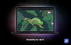 Nuevas aplicaciones se actualizan para ser compatibles de forma nativa con los Mac con M1. Es decir con Apple Silicon.... Filemaker Pro, Mac Base, Mac App Store, Apple News, Macs, Announcement, Shape