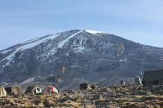 Climb Mount Kilimanjaro with Explore on our trekking tours. Trek the Lemosho route to Uhuru Peak with the aid of our expert mountain guides. Mount Kilimanjaro, Tanzania, Mount Rainier, Trekking, Climbing, Africa, Tours, Explore, Adventure