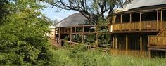 Shishangeni Private Lodge - A Luxury Safari Lodge in the Kruger National Park Kruger National Park, Game Reserve, African Safari, Africa Travel, Lodges, Best Hotels, South Africa, Tourism, Spaces