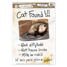 "Party Supplies | Redneck Party Ideas | Redneck Clings...Looky here - yer cat is found! This Cat Found Peel 'N Place is a must have item if you are throwing a redneck party. Your guests will laugh their heads off when they see this ""cat"" and the phrases below the photo."