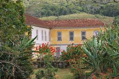 Fazenda do Buriti - Piau (MG)