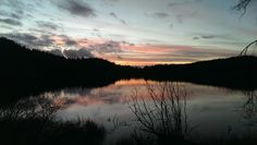 Lake Padden, Bellingham, WA - Christmas in the Pacific Northwest // Green Revival Travels