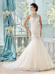 David Tutera for Mon Cheri - 116222 – Ica - Lace open back wedding dress, tulle and embroidered metallic Schiffli lace appliqués over satin trumpet gown with cap sleeves, illusion and lace jewel neckline with delicate hand-beaded trim, softly curved bodice with dramatic dropped waistline, illusion and lace low scoop back with crystal button closures, softly gathered skirt, chapel length train.Sizes: 0 – 20, 18W – 26WColors: Light Gold/Stone, Ivory, White