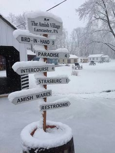 Which way should we go? - Amish Country