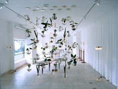 Hanging plant installation by Svenskt Tenn. To Perfectly Frank Moblemassan 2013