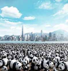1600 Panda world par Paulo Grangeon