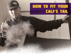 Learn how to fit your calf's tail while fitting show cattle. This important step in cattle fitting will help prepare you for the show. Cattle Barn, Show Cattle, Beef Cattle, Livestock Judging, Showing Livestock, Baby Cows, Baby Elephants, Giraffes, Cow Tipping