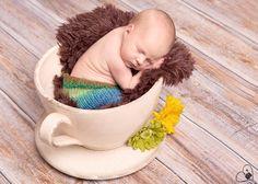 Newbornfotos - Frisch geschlüpft - Neugeborenenfotos - Fotowerkstatt Martina Friedl, Ingolstadt