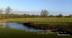 inspirativní design zvlášť dobrá je mapka http://www.willowsnaturalburialgrounds.co.uk/plots