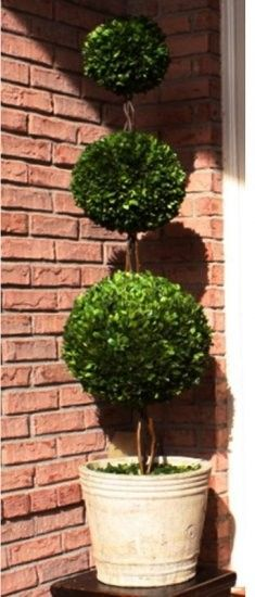"Preserved Boxwood Topiary - Three Ball - 59""  #boxwood #boxwoodtopiary #homedecor"