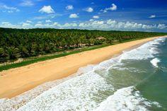 Vista aérea da virgem praia do Guaiu.
