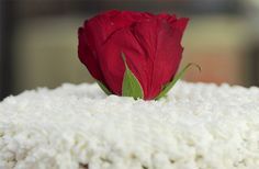 White Rose Cake - Iginio Massari - Iginio Massari The Sweetman. Una stagione piena di dolcezza