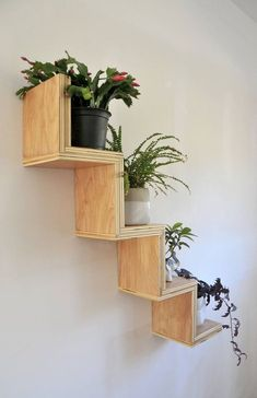 Zig Zag Display Shelf Zig Zag Display Shelf Naomi C Blankenship naomicblankenship wall shelves Add a little whimsy to any wall with the playful nbsp hellip regal palette Plant Shelves, Display Shelves, Natural Home Decor, Diy Home Decor, Plywood Shelves, Household Plants, Wood Wall Shelf, Floating Wall Shelves, House Plants Decor