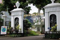 Kebun Raya Bogor menjadi pilihan tempat wisata di Bogor dekat stasiun Bogor, Java, Botanical Gardens, Trekking, Offroad, Sidewalk, Mansions, House Styles, City