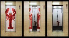 elevator skins