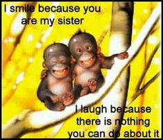 @Somia Yasmeen @Fatimah Yasmeen