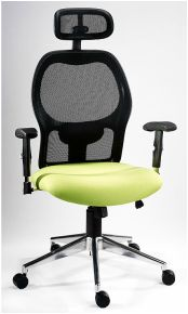 breeze high back chair Executive Office Chairs, High Back Chairs, Cape Town, Breeze, Furniture, Home Decor, Decoration Home, Room Decor, Home Furnishings