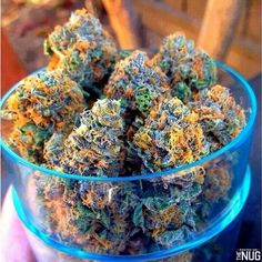 Mail Order Marijuana Online with worldwide shipping,Buy Marijuana Online with Worldwide Shipping ,Buy Weed Online, Buy Cannabis Oil Online. Buy Cannabis Online, Buy Weed Online, Cannabis Oil, Cannabis Growing, Bongs, Cbd Oil For Sale, Edibles Online, Medical Marijuana, Herbs
