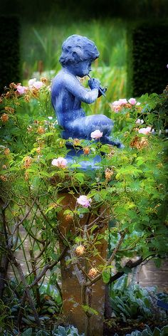 What a lovely focal point in your garden, surrounded by roses. It's so nice to go around a corner & see something pretty like this.