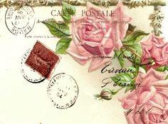 postcard - roses.