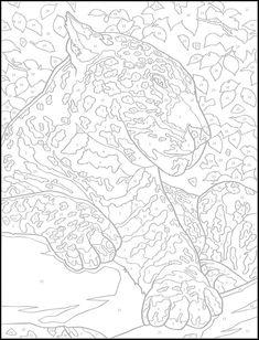 Cat Cats Kitty Kitties Kitten Kittens Feline Gatos  Katze chat gatto cat котэ  kočka druku gato katt macska tulostettava Coloring pages colouring adult detailed advanced printable Kleuren voor volwassenen coloriage pour adulte anti-stress kleurplaat voor volwassenen Line Art Black and White  Welcome to Dover Publications